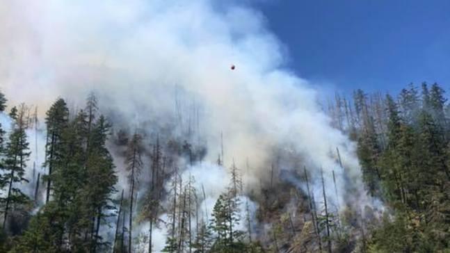 Resultado de imagen para Sheriff: Level 3 'Go!' evacuation notice for homes near MP 97 fire