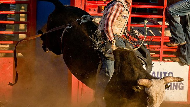 29th annual eugene pro rodeo canceled we know we ll see you all back here next year kval 29th annual eugene pro rodeo canceled